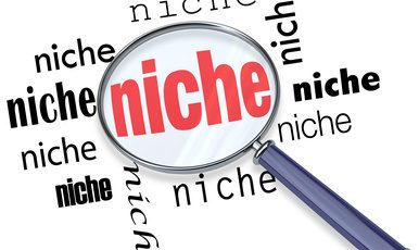 Niche Market Auction Site