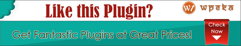 Premium WordPress Plugin